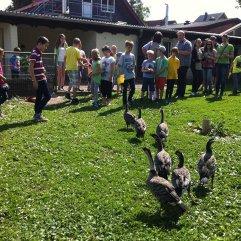 2. Paten-Nachmittag im Vogelpark