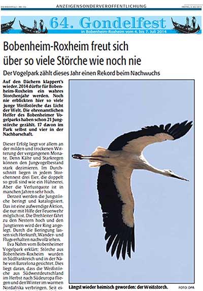 Bobenheim-Roxheim freut sich über so viele Störche wie noch nie