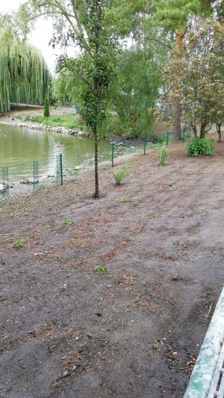 Der Schwanensee wird neu angelegt!